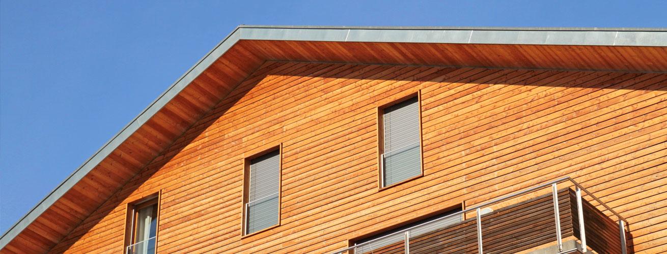 Wagner traitement bois for Traitement meuble bois