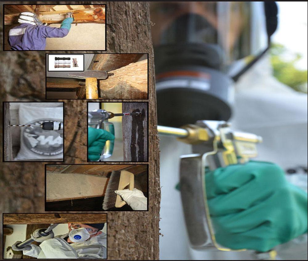 traitement bois de charpente et poutre antibes renovea. Black Bedroom Furniture Sets. Home Design Ideas