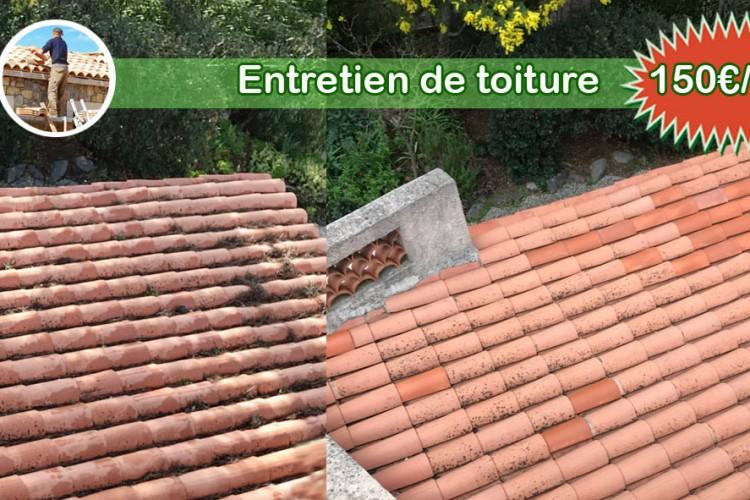 Entretien et nettoyage de toiture à l'année