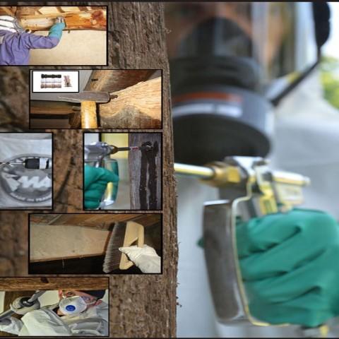 traitement des bois de charpente par injection sous pression
